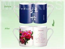 12 Monthly Flowers CD101W-9818D